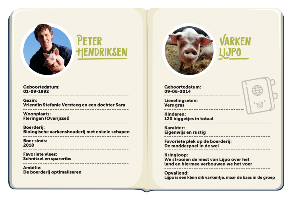 Biologische varkenshouder Peter Hendriksen en varken Lijpo